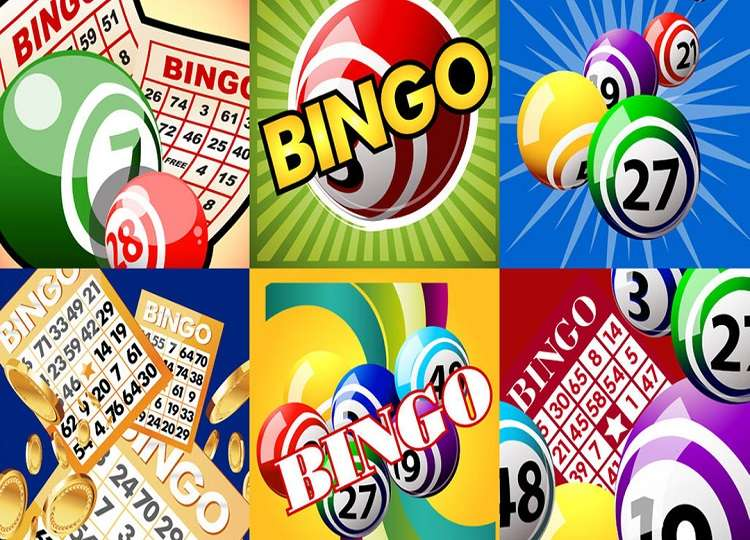 How-to-Compare-and-Choose-an-Online-Bingo-Site